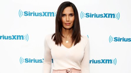 Padma Lakshmi's Gingerbread House Hack You'll