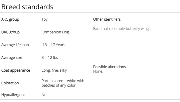 papillon breed standards