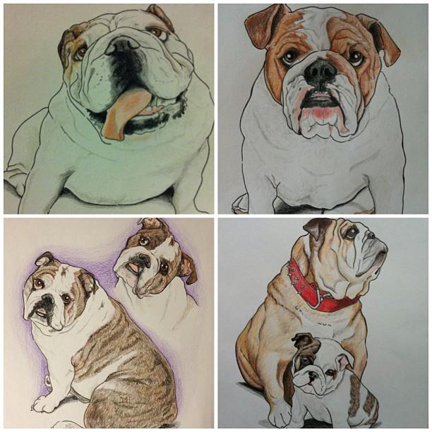 Artistic Bulldog