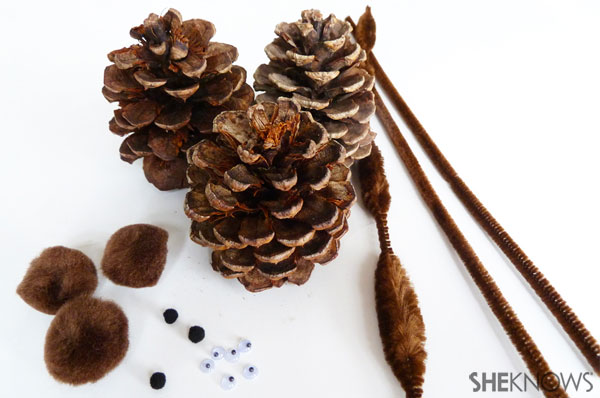 How to make a pine cone squirrel | Sheknows.com - Step one: supplies