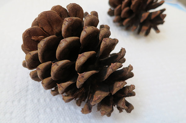 homemade pinecone ornaments