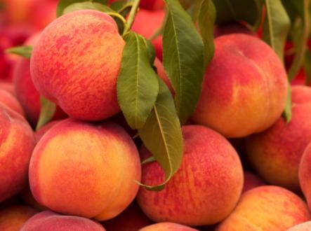 Baked Summer Peaches