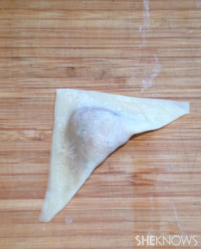 pork dmpling wonton fold 2