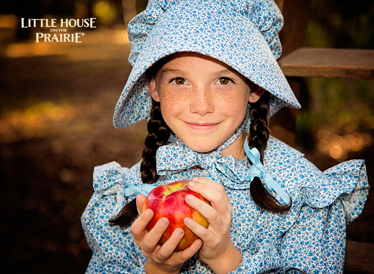 Gifts For Little House On The Prairie Fans Sheknows