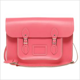 Sophisticated satchel