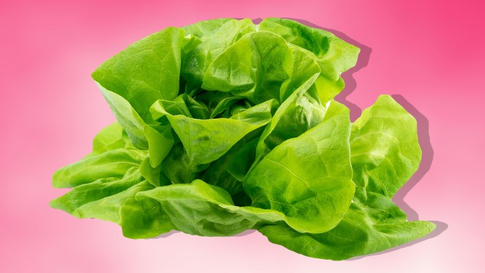 Millennial Pink Lettuce Is a Thing,