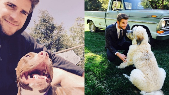 20 celeb doggy dads that we