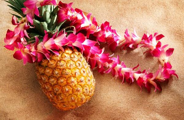 Festivals and family events in Hawaii