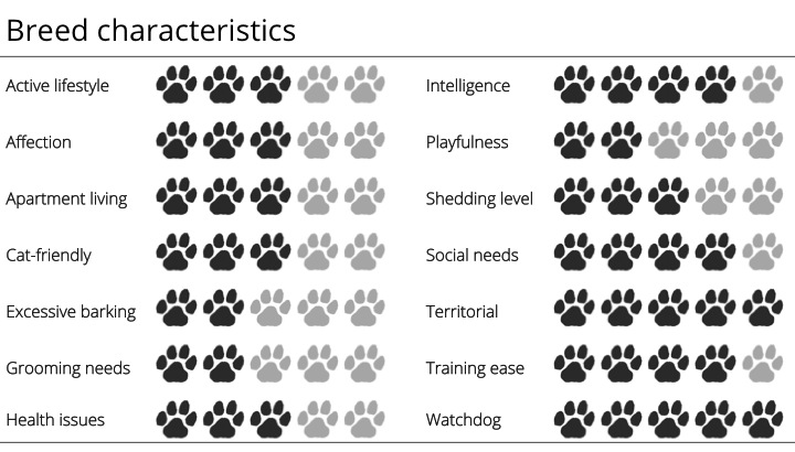 rottweiler breed characteristics