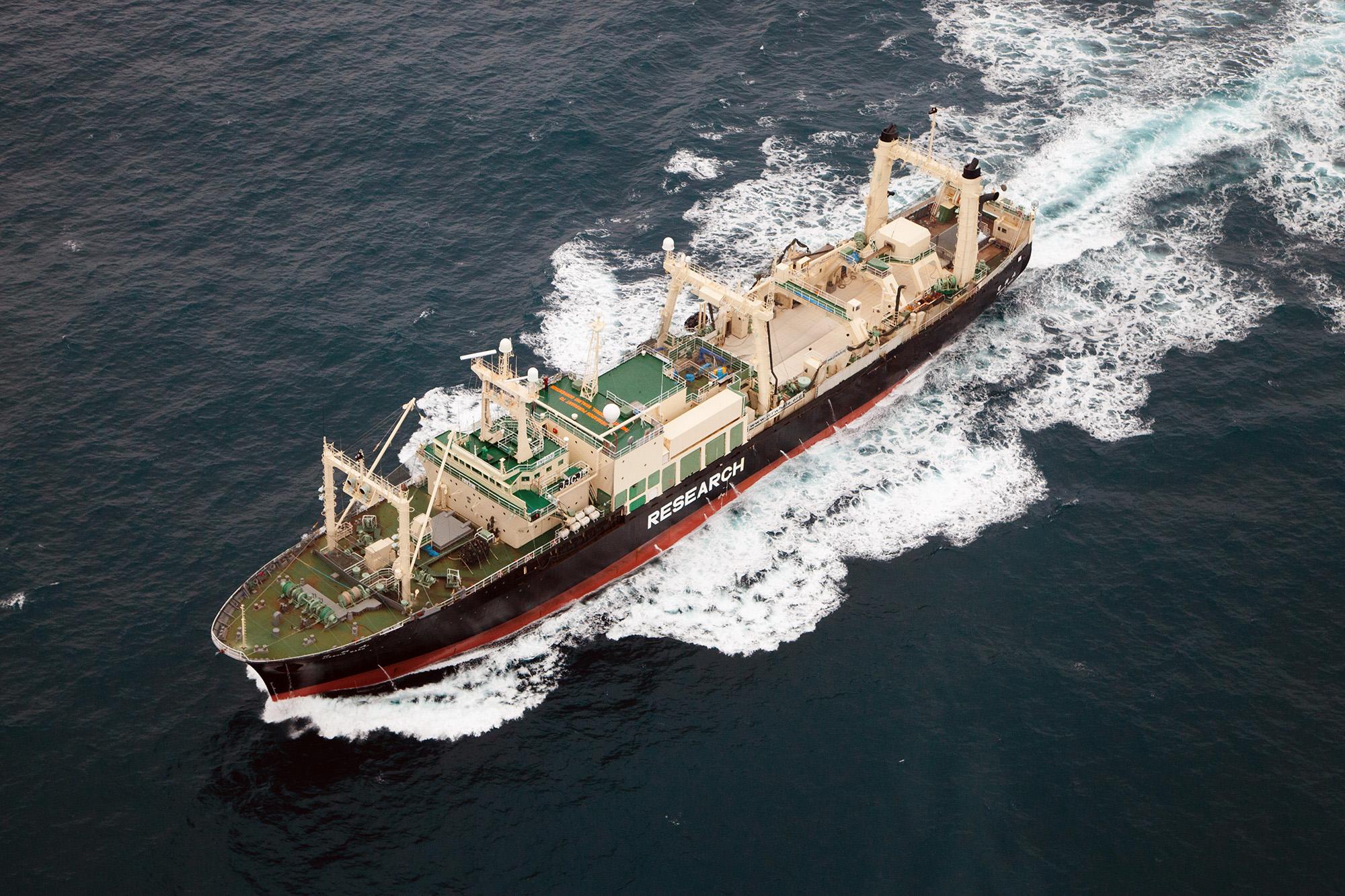 Sam Simon ship sea shepherd