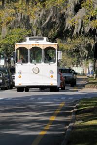 Savannah tour