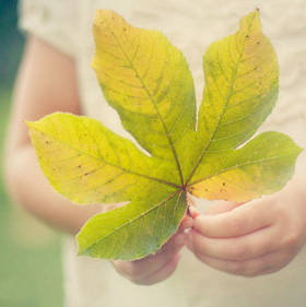 GIrl holding fall leaf