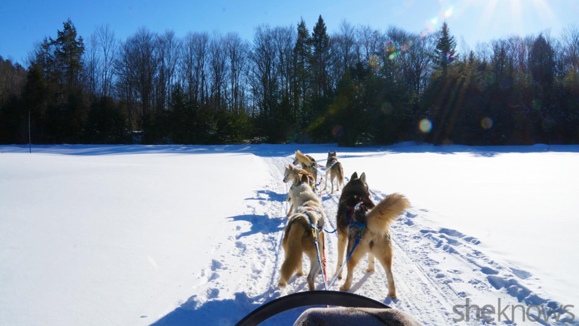 Snow Vacation