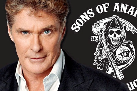 David Hasselhoff and Tom Arnold to Sons of Anarchy