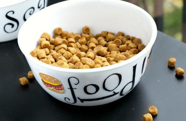 Easy DIY customizable dog bowl