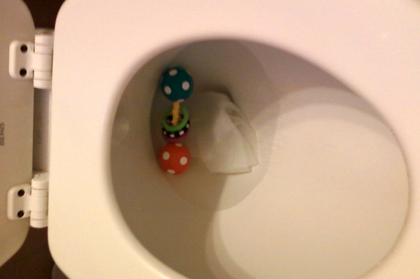 Toilet becomes the toy-let   Sheknows.com