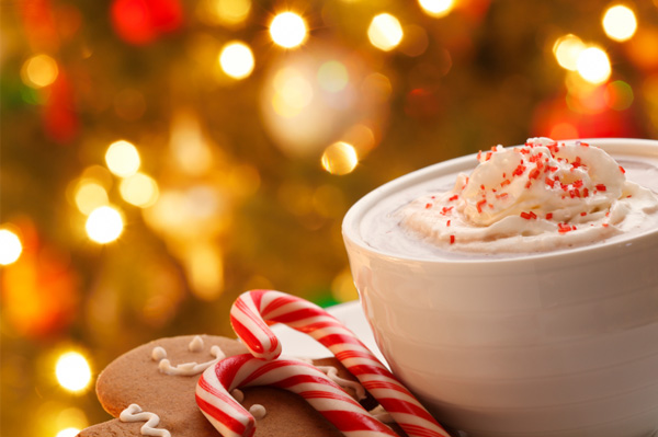 Gourmet Christmas Hot Chocolate