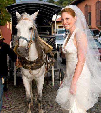 Eco-friendly wedding transportation