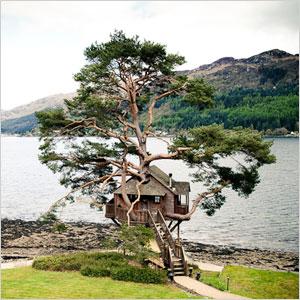 The Tree House in Loch Goil, UK