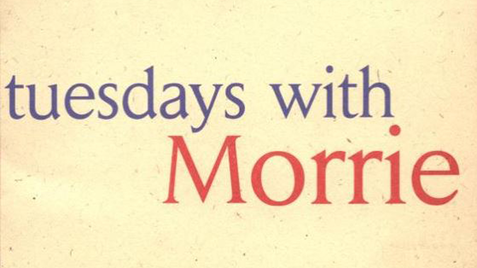 tuesdays with morrie analysis essay