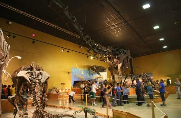 The Wyoming Dinosaur Center & Dig
