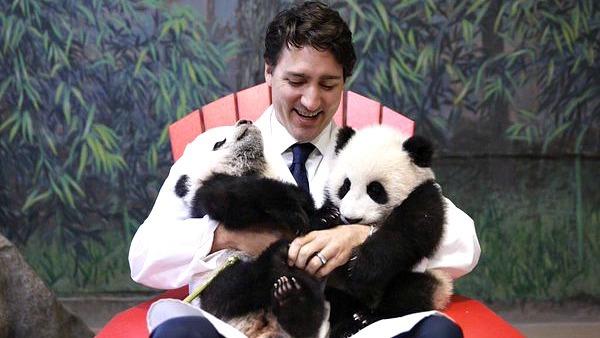 Justin Trudeau snuggled Canada's new panda