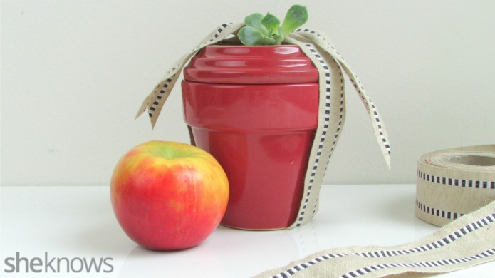 Make this DIY apple-shaped succulent plant