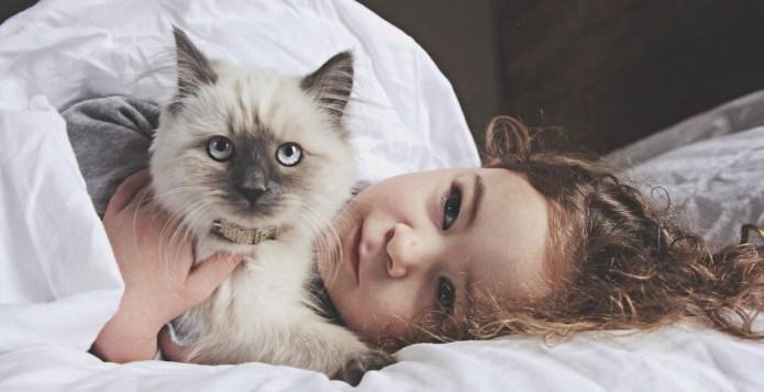 6 ways being a cat parent