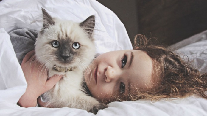 6 ways being a cat parent