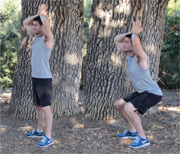 Silly Shark Squats (as seen in Wallie Exercises)