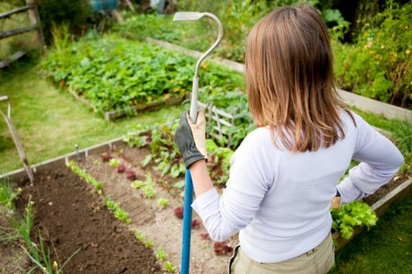 woman looking over garden