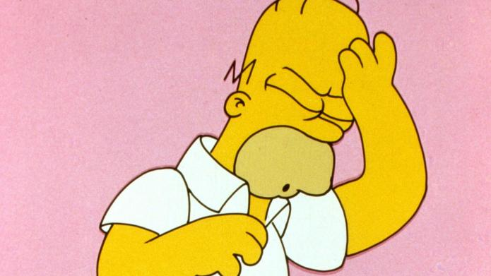 Homer Simpson - 'The Simpsons' (FOX)