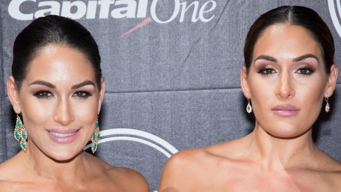 Nikki Bella teases Bella Twins' fans