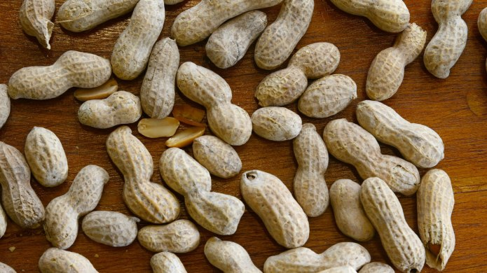 A Promising New Treatment for Peanut