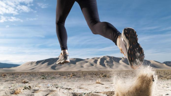 How endurance training transforms your body
