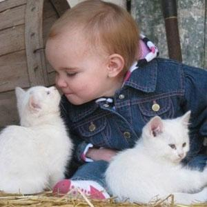 Kids and kittens: What could be