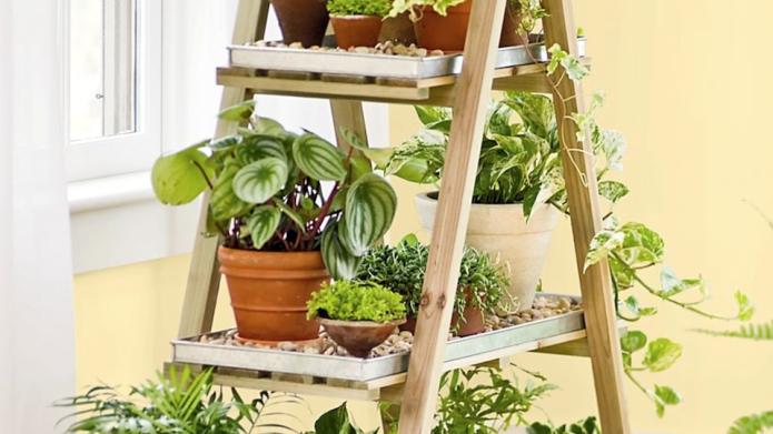 9 Tools that make indoor gardening