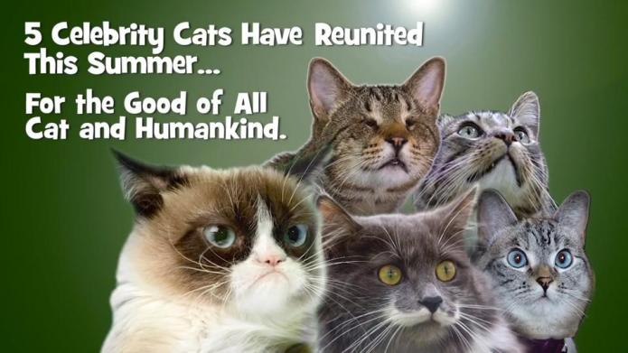 Grumpy Cat and friends get frisky
