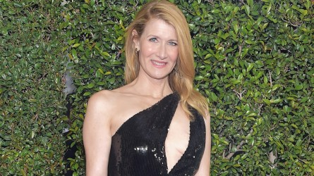 Laura Dern attends the 24th annual