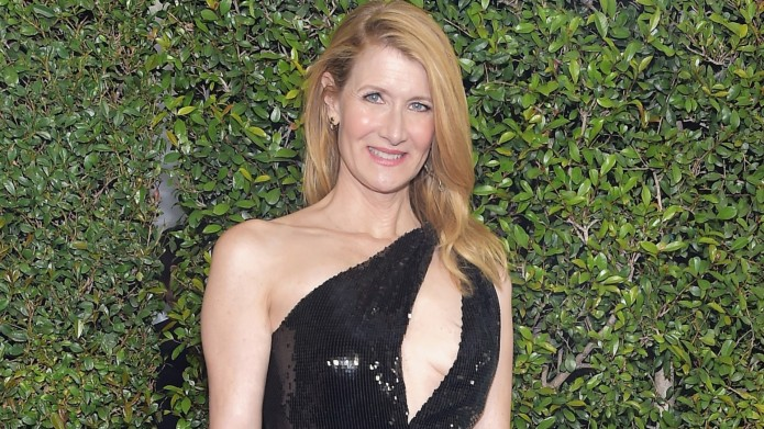 Alert: Big Little Lies May Not be Over, According to Laura Dern