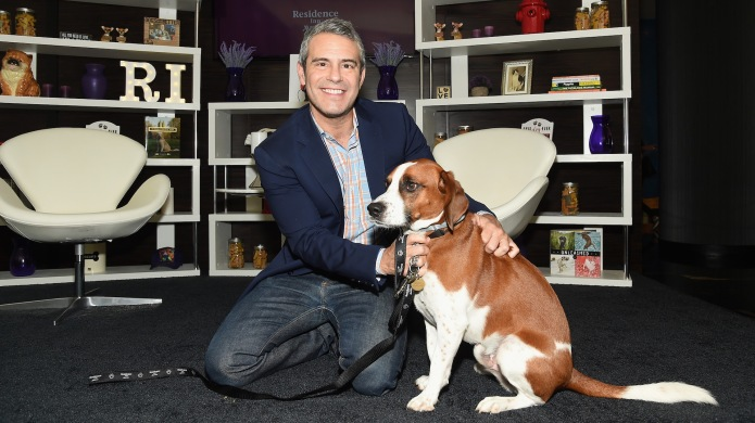 Andy Cohen Dog Wacha