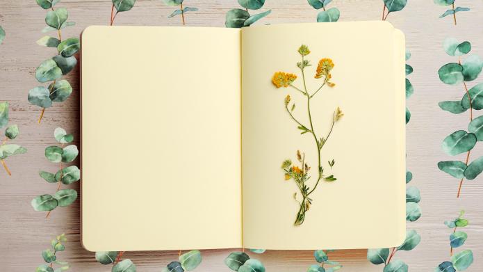 Spring flower notebook