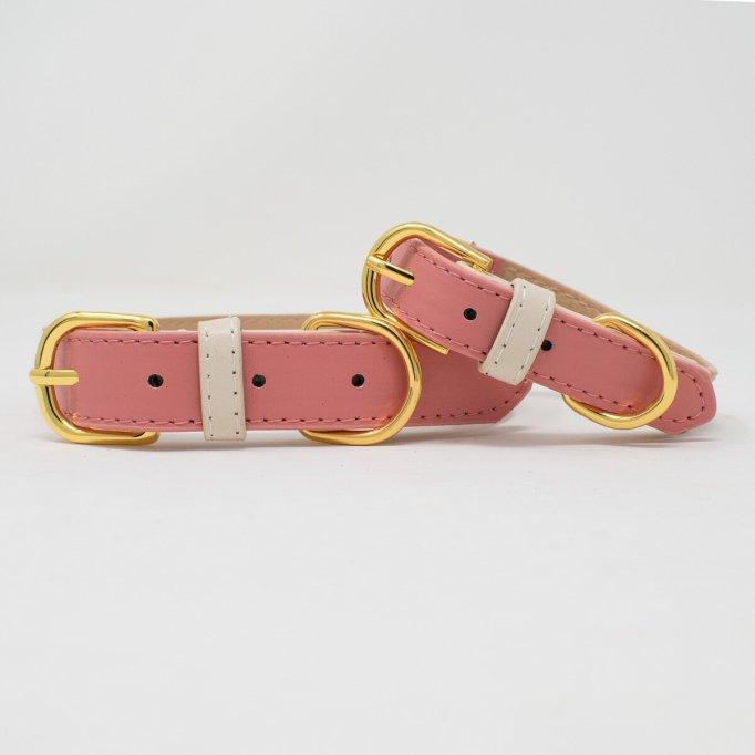 Pink Papyrus Lola dog collar