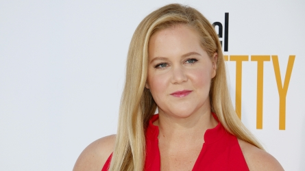 Amy Schumer IVF Posts