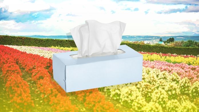 A box of tissues in a