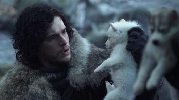 'GoT' Direwolves Puppies.