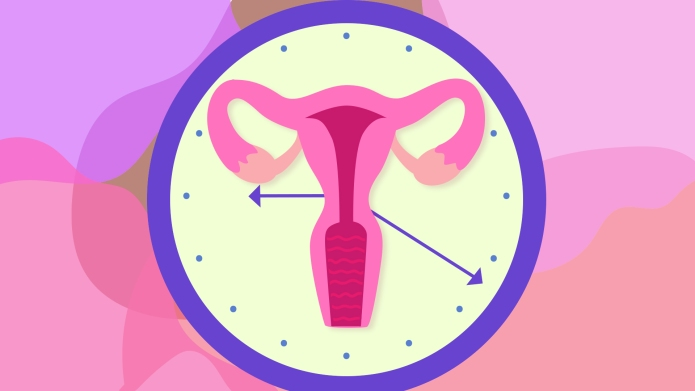 An illustration relating to menopause