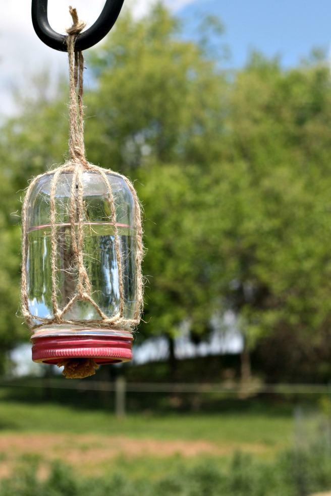 Easy Gardening Tutorials: DIY Butterfly Feeder