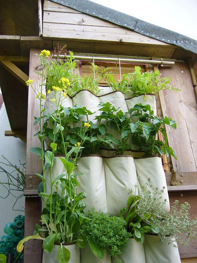 Easy Gardening Tutorials: DIY Vertical Shoe Caddy Garden