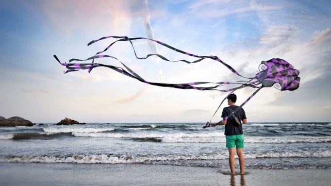 Octopus kite.